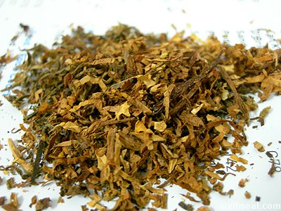 cannabis tobacco mix