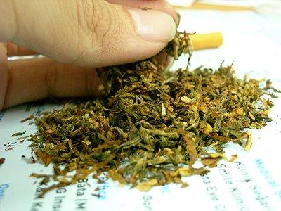 cannabis tobacco sift