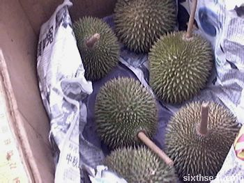 durians.jpg