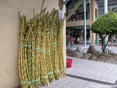 pasar sentral sugarcane