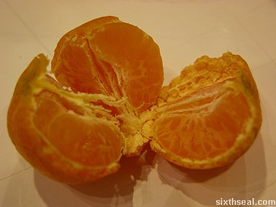 tiny mandarin orange open