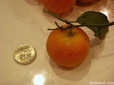 tiny mandarin orange size