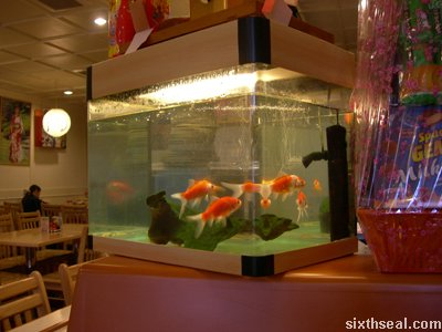 fish tank