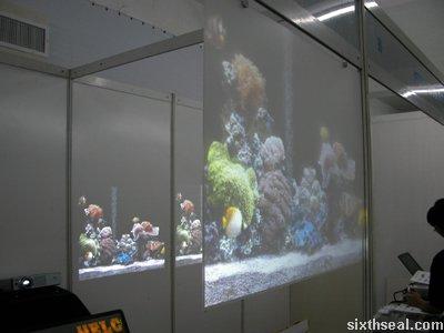 flat projectors