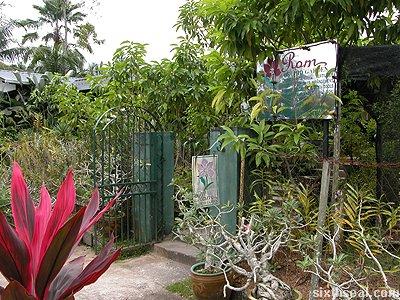 rom orchid garden