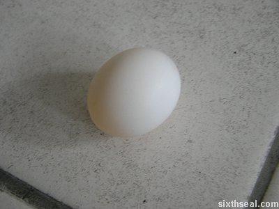 bird egg pristine
