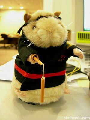 kung fu rat