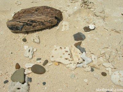 manukan island corals