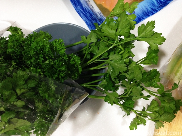 Curly Parsley Flat Leaf Parsley