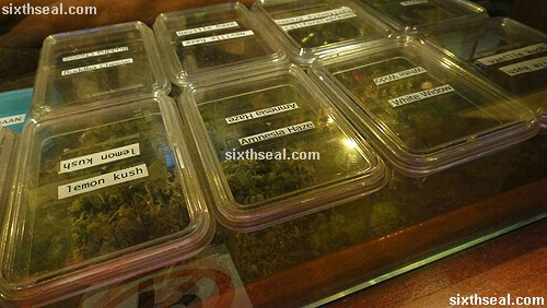 cannabis strains