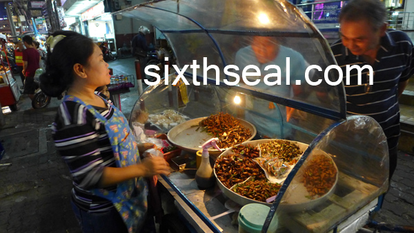 fried insect stall