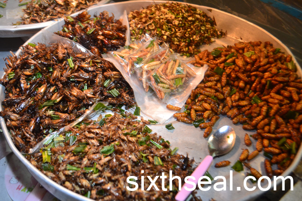snacks insects bangkok