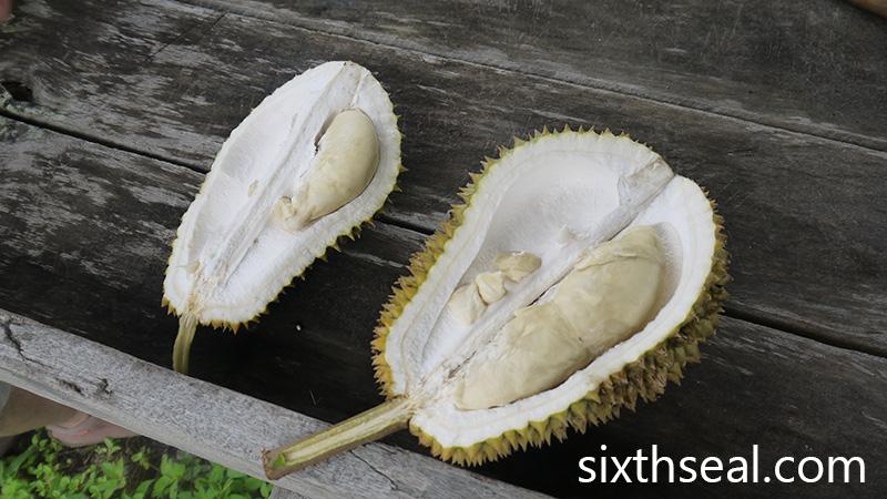 Durian Sarawak