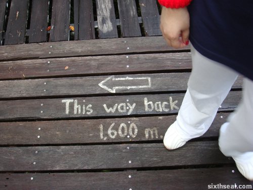 this way back