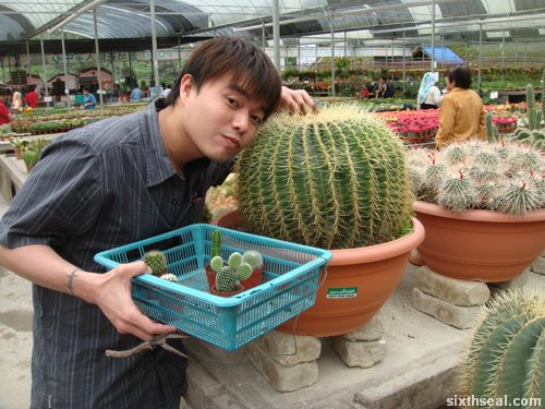 cactus camwhore