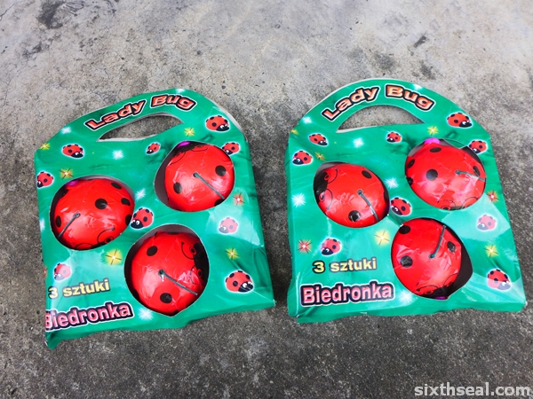 lady bug fireworks