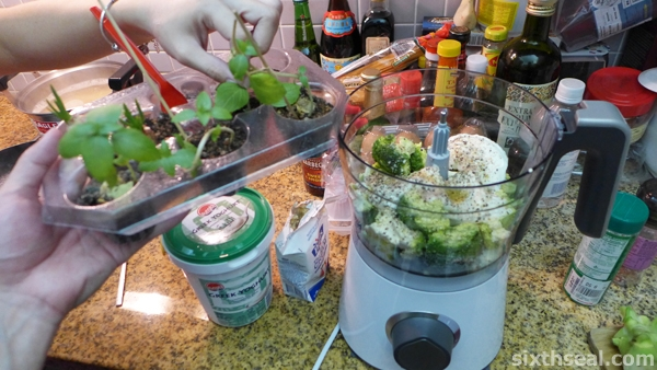 adding fresh basil