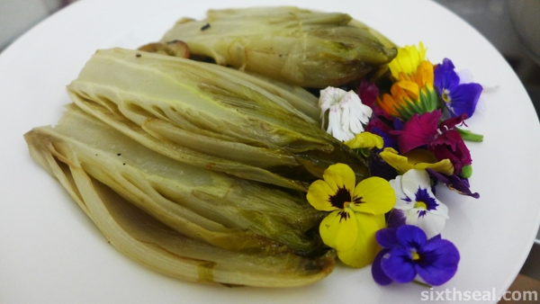 braised belgium endives