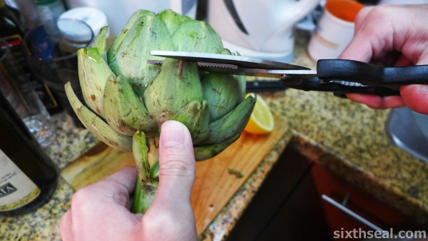 cutting artichoke thorns