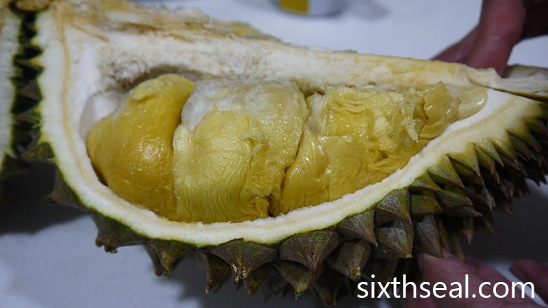 D118 Durian Tembaga