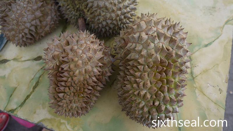 D15 Durian