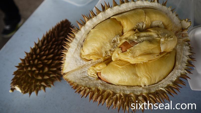 D7 Durian