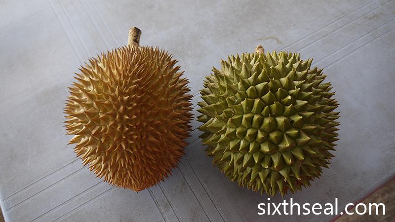 D7 Green Skin Durian