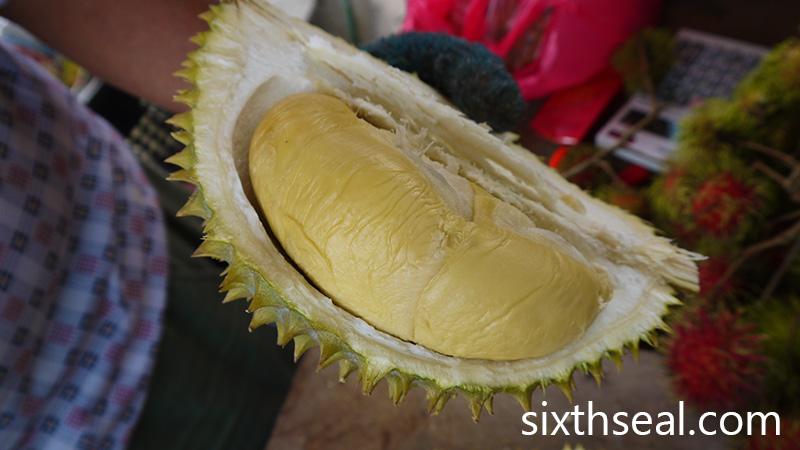 D88 Durian