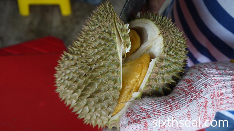 Durian D2