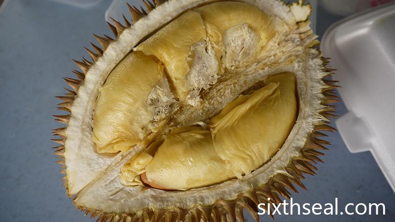 Durian D7