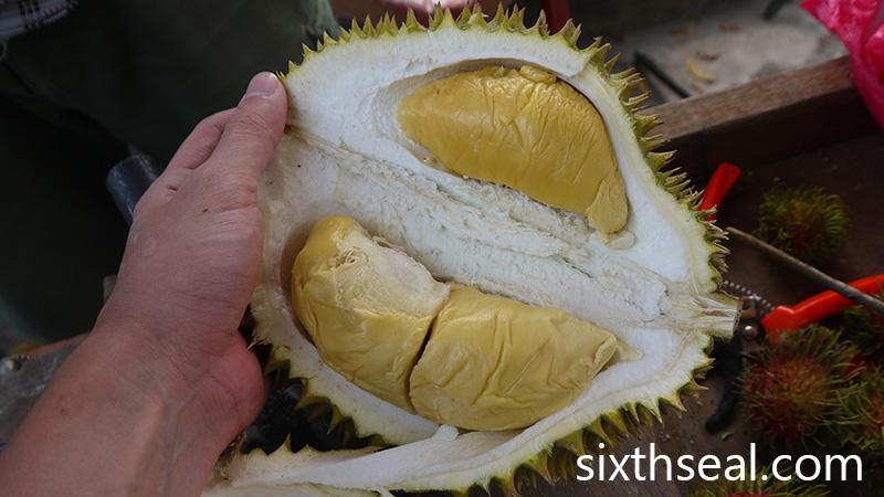 Durian D88