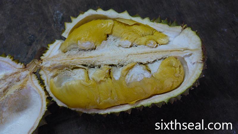 Durian Kembong
