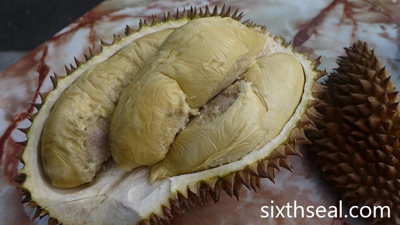 Durian Susu