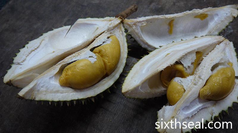 Durian Udang Merah