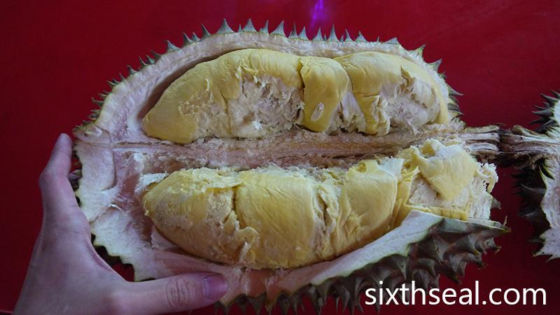 Huge Durian