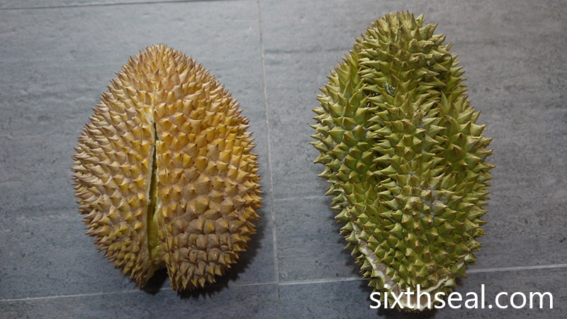 Jungle Durians