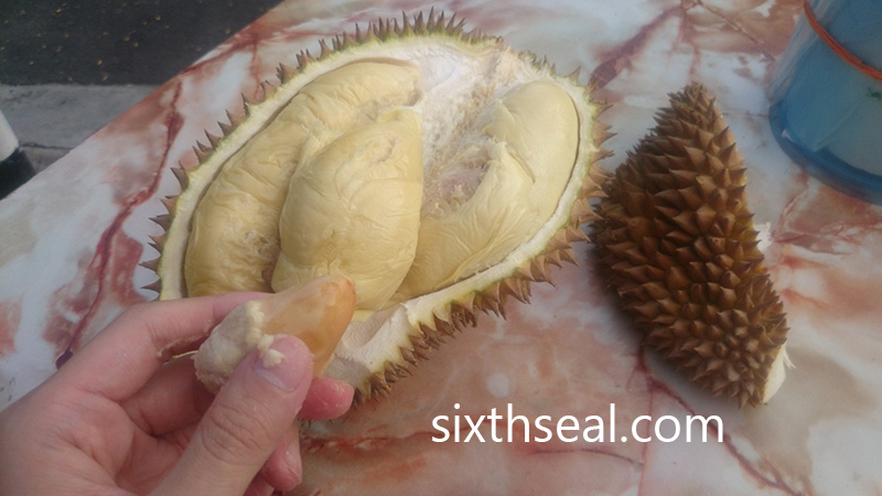 Milk Durian