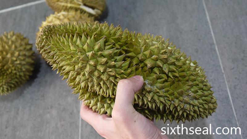Starfruit Durian