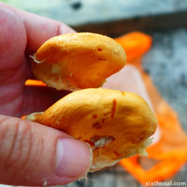 durian jantung seeds
