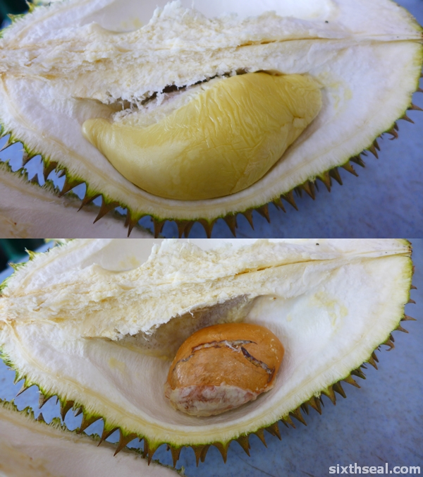 durian mas selangor