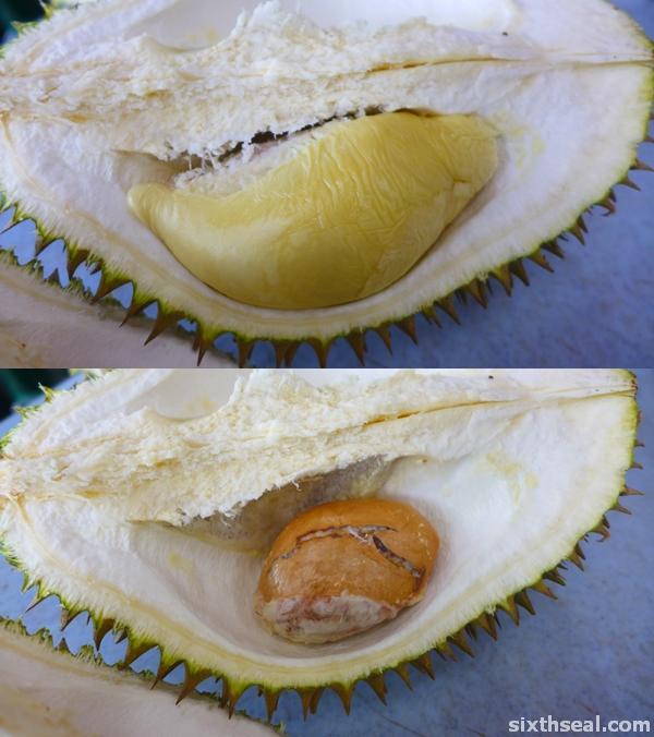 durian mas selangor