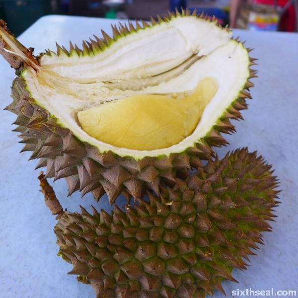 horlor durian