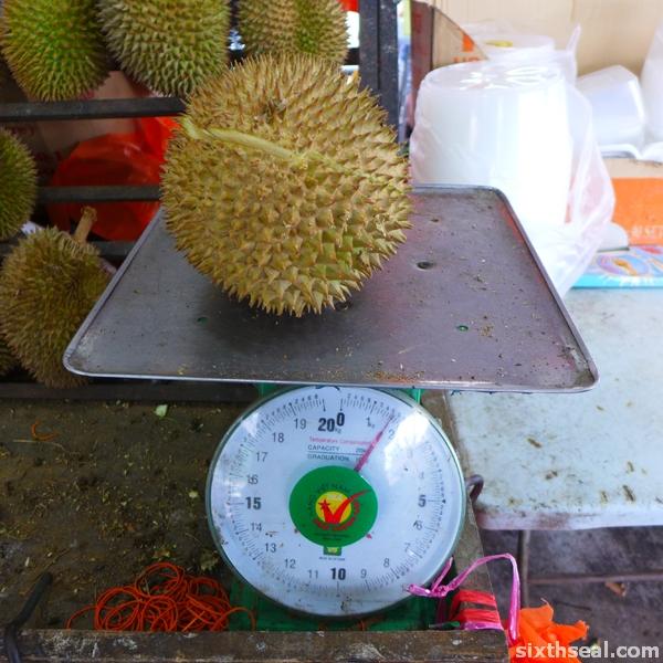 mas selangor durian