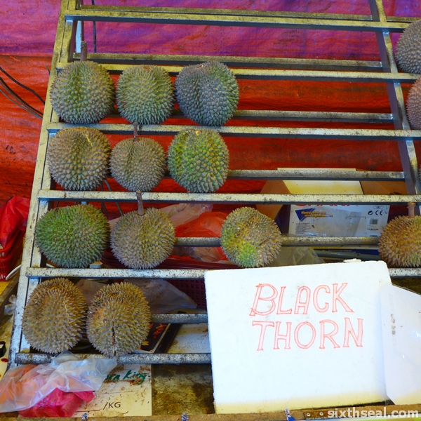 new black thorn durian