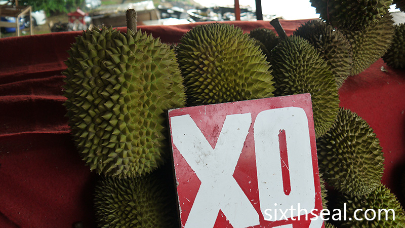 xo durians