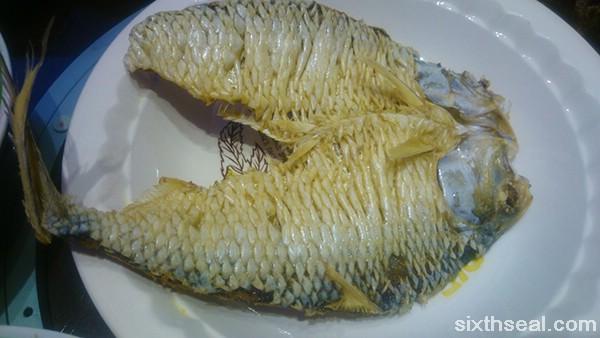 Terubok Fish