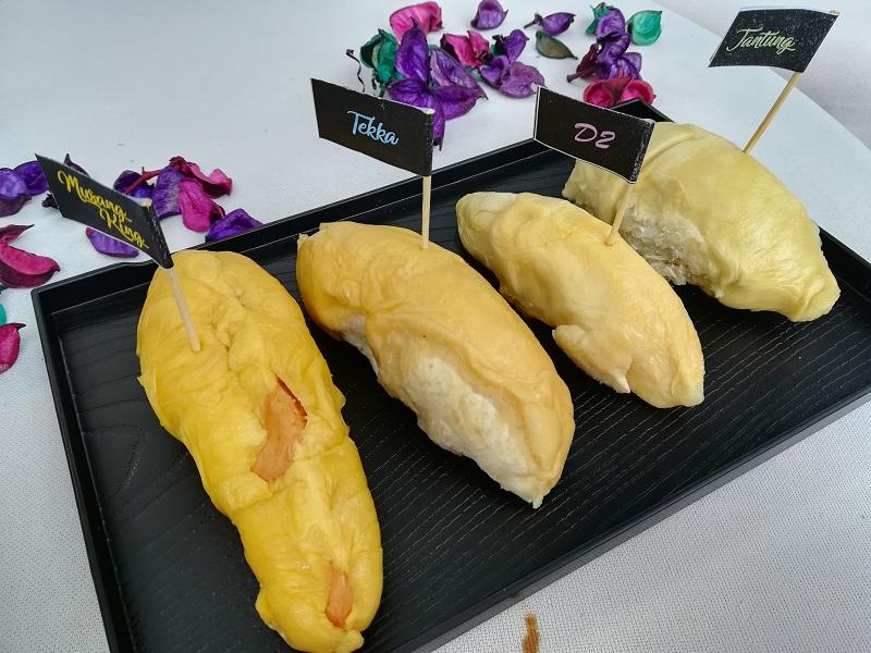 Durian-Flight