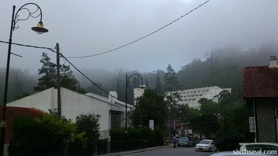frasers fog