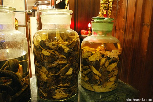 snake wine jars