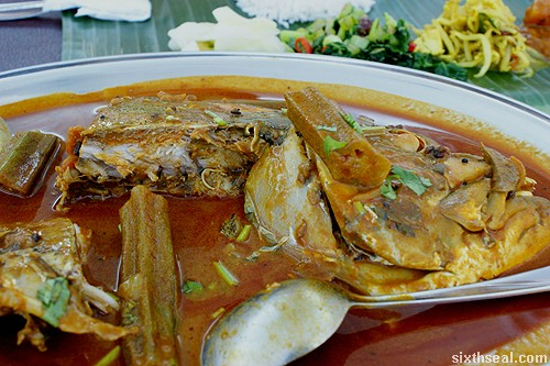 jothys curry fish head meat